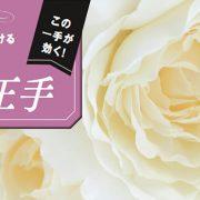 理想肌へかける美の王手 Vol.1