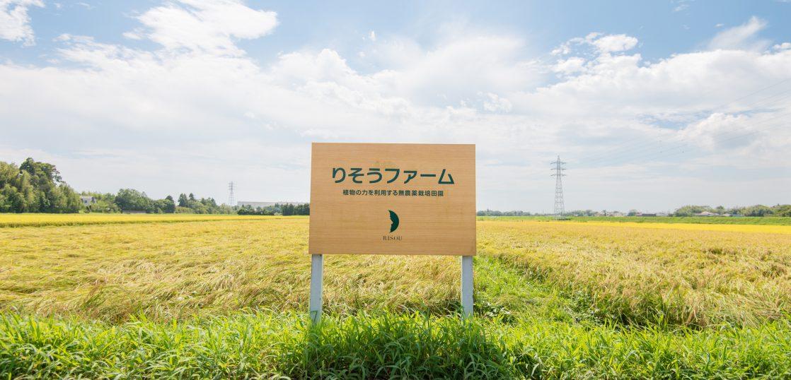 2018年無農薬栽培米の収穫